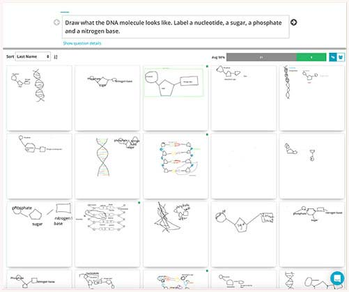 drawing the structure of a nucleotide