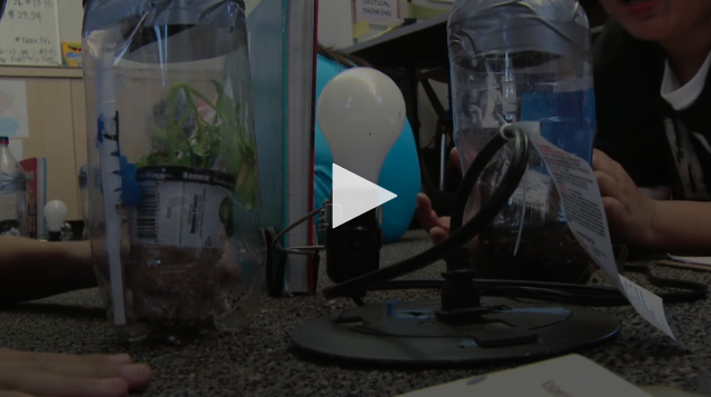 VIDEO:Climate Change in a Bottle: Complete Lesson