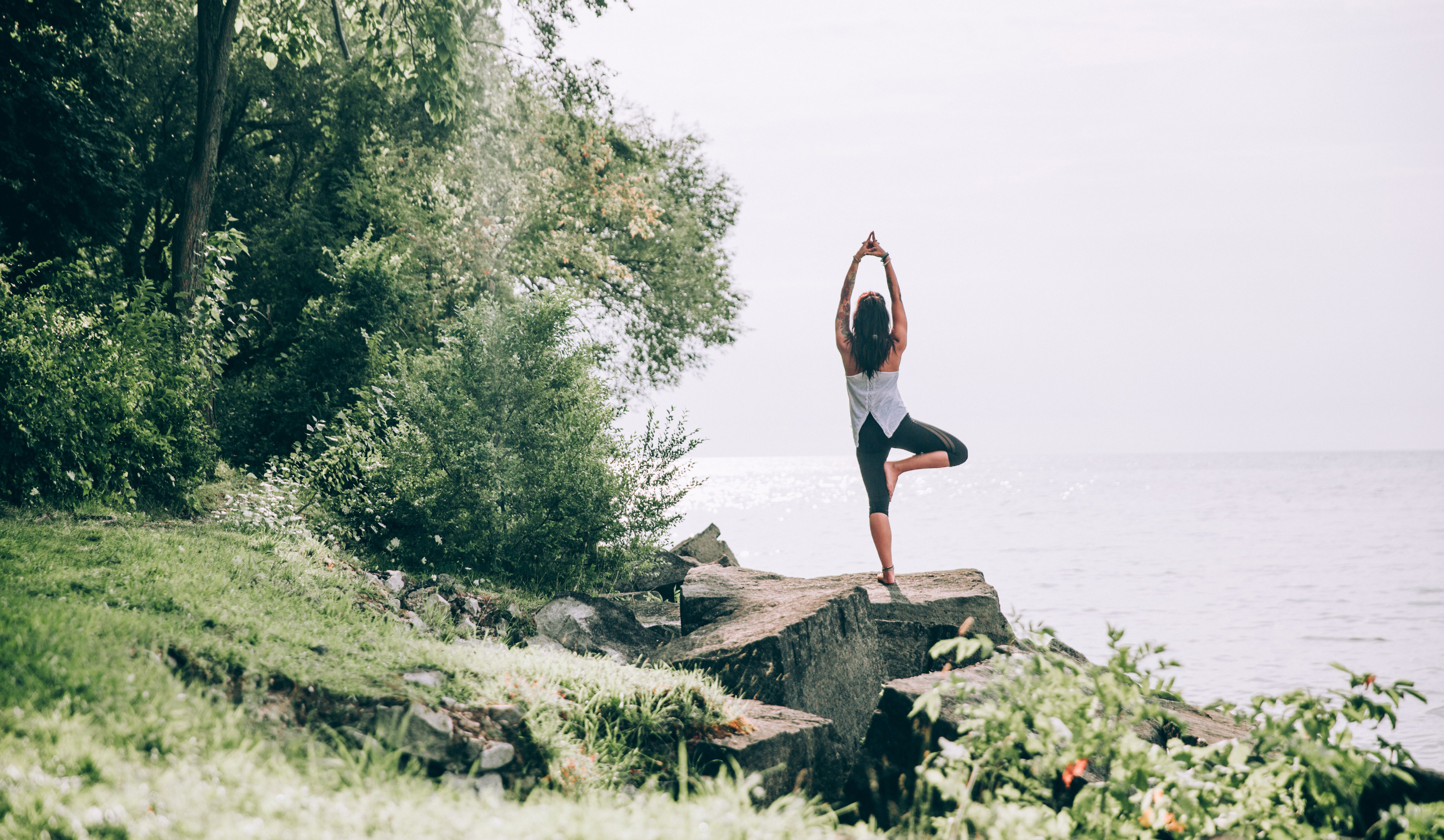 cropped_tree-pose-yoga-in-nature